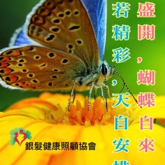 銀髮心語_20180912_花若盛開蝴蝶自來人若精彩天自安排