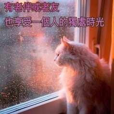 銀髮心語_20181024_有老伴或老友也享受一個人的獨處時光